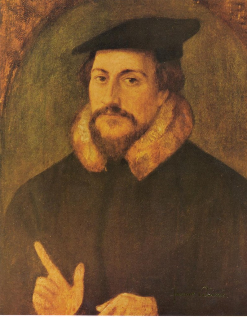 a biography of john calvin a promoter of protestantism and the father of calvinism Tony lane reviews bruce gordon's book, 'john calvin's institutes of the christian religion: a biography' (princeton, 2016).